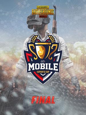 Poster of Final NXL MEC 2019: PUBG