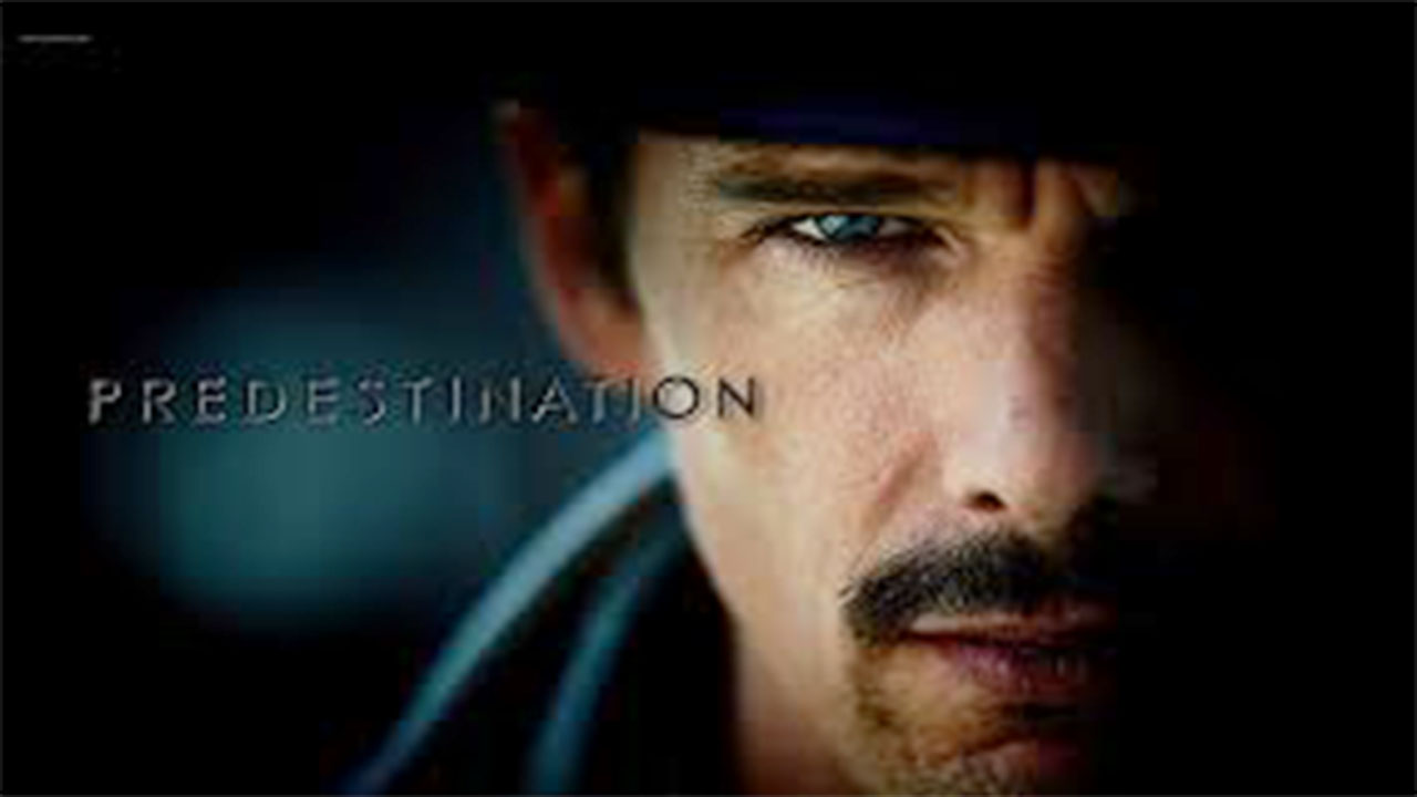 Poster of Predestination