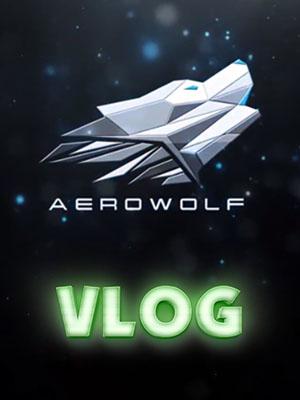 Poster of Farewell - Aerowolf CSGO